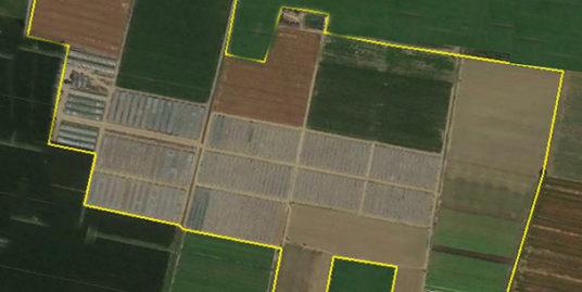 Terreno agricolo in vendita a Granarolo dell'Emilia (Bologna)